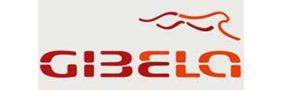 donor-gibela-282x90